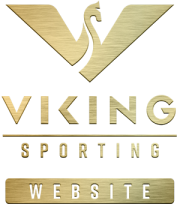 viking-sorting-link